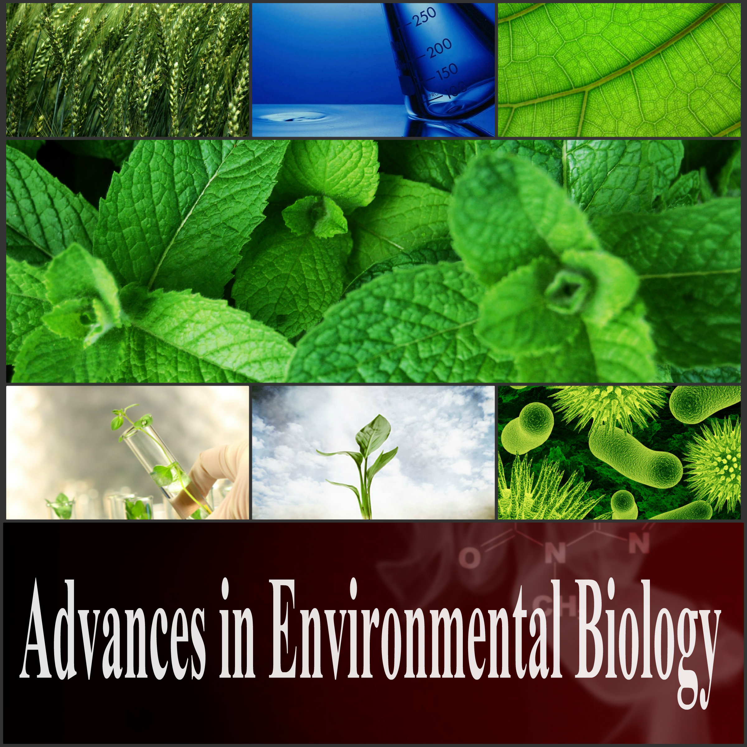 environmental biology research papers Environmental biology bs 105 research paper guidelines this semester you are required to write a formal research paper concerning an environmental  papers on the.